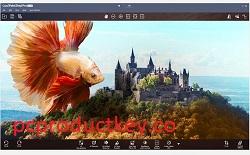 Corel PaintShop Pro Crack + Ultimate 23.1.0.27 + Free Download 2021