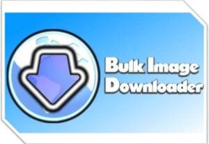 Bulk Image Downloader Crack 5.94.0 + Free Download [Latest]
